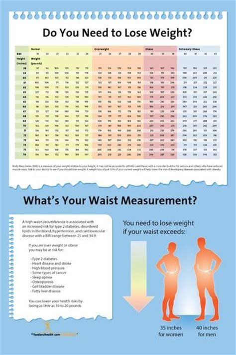 exam room bmi index chart poster