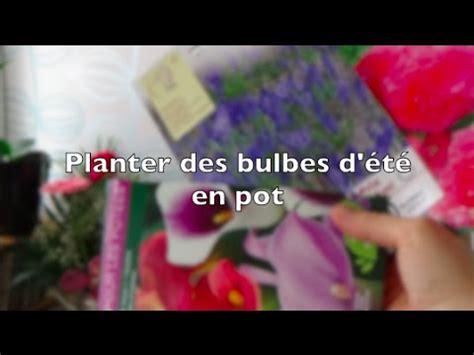 planter des bulbes d 233 t 233 en pot pour le balcon arum begonia triteleia