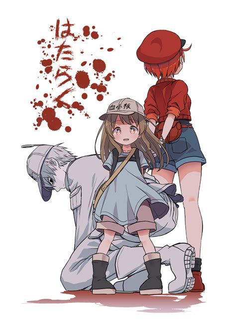 erythrocite hataraku saibou zerochan anime image board