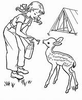 Camping Coloring Pages Sheets Activity Printable Deer Fun Sheet Outdoor Baby Children Colour Print Books Activities Summer Childrens Colouring Camp sketch template