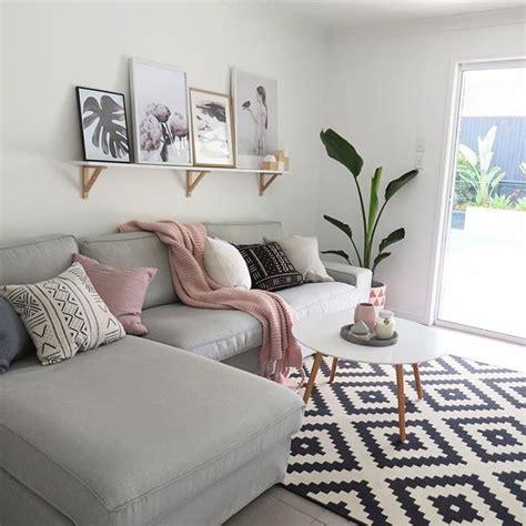 best 25 living room plants ideas on pinterest