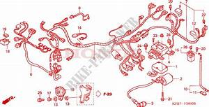 Wire Harness  1  For Honda Innova 125 2003   Honda Motorcycles  U0026 Atvs Genuine Spare Parts Catalog