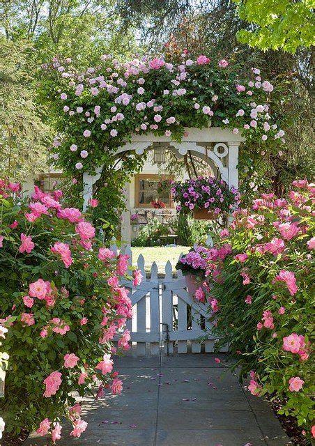 1000 ideas about pink garden on gardening