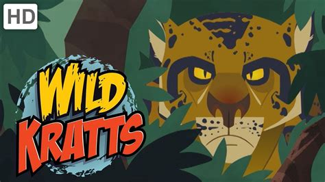 wild Kratts The Deadliest Felines In Nature Youtube
