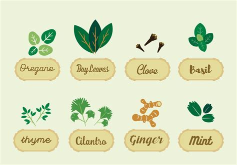 herbs vector download free vector art stock graphics
