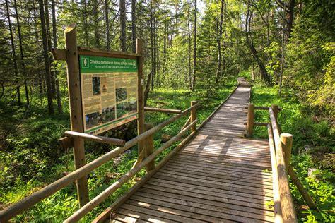 Šlīteres dabas taka - Skolēnu ekskursijas