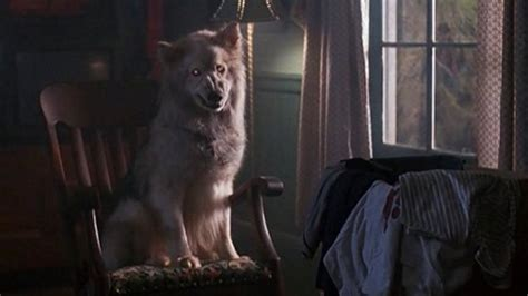 Pet Sematary Remake Pressing Ahead, Directors Hired Den
