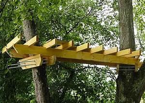 Constructeur Cabane Dans Les Arbres : construire une maison dans un arbre ventana blog ~ Dallasstarsshop.com Idées de Décoration
