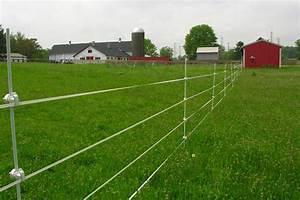 Ryders Lane Farm