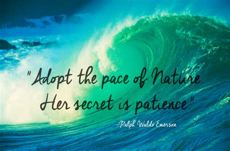 beautiful quotes  nature