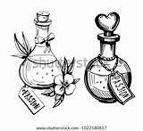 Potion Bottles Drawing Potions Poison Bottle Vector Drawn Illustration Tattoo Hand Drawings Clip Cute Sketches Shutterstock Coloring Tattoos Cartoon Sketch sketch template