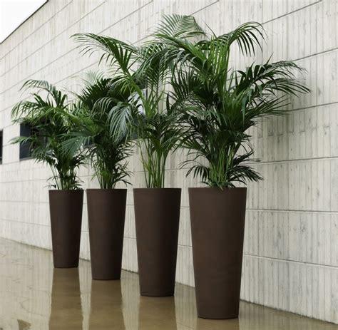 snob comme un pot de chambre comment bien choisir le pot pour chaque plante le
