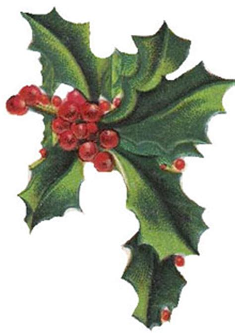 christmas clipart vintage holly christmas gifts