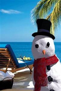 1000+ images about FL / Beach Christmas on Pinterest ...
