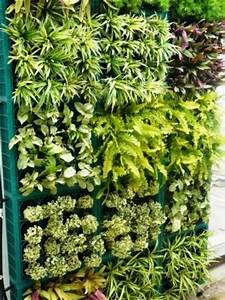 Grüne Wand Selber Bauen : vertikale g rten ideen f r einen senkrechten garten ~ Bigdaddyawards.com Haus und Dekorationen