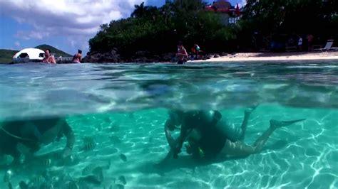 scuba diving  st thomas kids dive divehdv youtube