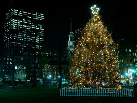halifax sends christmas tree and support to boston victims