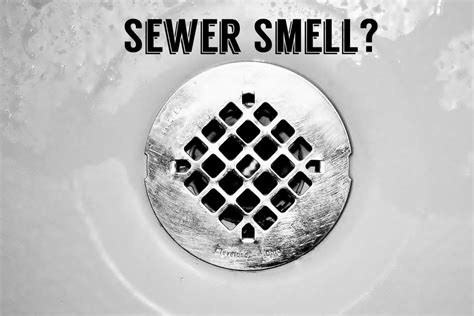 smell sewer gas   house   diy remedy