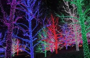 8 of the best christmas light shows in canada wheels ca