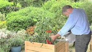 Potager Hors Sol : cultiver un potager hors sol jardinerie truffaut tv ~ Premium-room.com Idées de Décoration