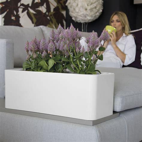 vasi grandi per piante fioriera a cassetta per vasi e piante calypso nicoli