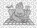 Coloring Drawings Rugs sketch template