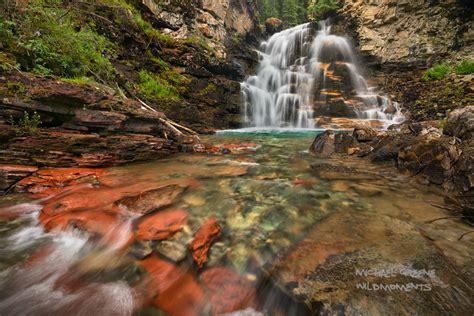 secluded rejuvenation san juan national forest