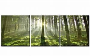 Bilder Natur Leinwand : early morning 120x40cm 3 bilder leinwand wald natur top ebay ~ Markanthonyermac.com Haus und Dekorationen