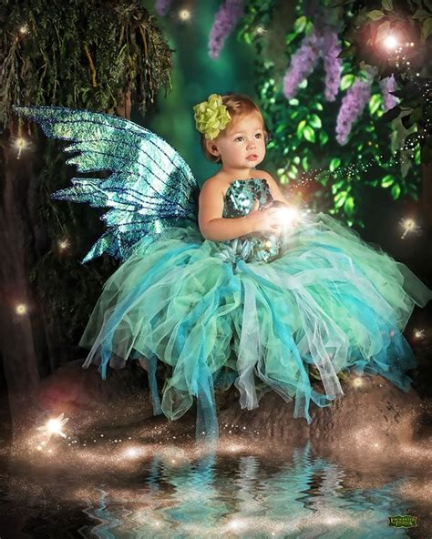 enchanted fairies yelp