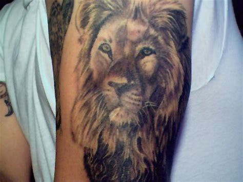 Lion Tattoo Meaning  Tattoo Boy Girl