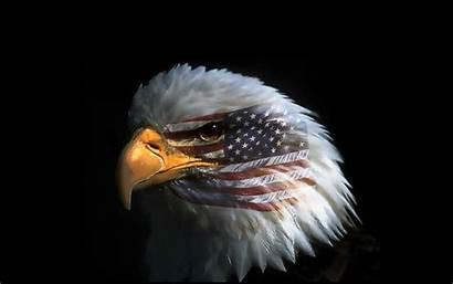 Eagle Flag American Pc Eye Phone Mobile
