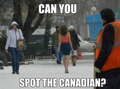 Canadian Memes - funny pictures meme spot the canadian