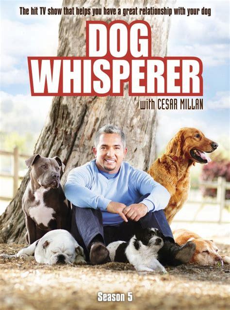 dog whisperer  cesar millan dvd release date