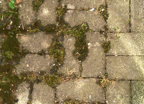 ölflecken auf beton entfernen pflaster reinigung beton und pflastersteine reinigen