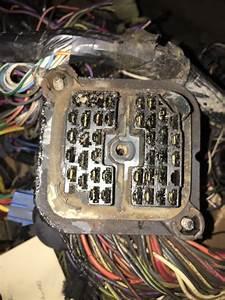Firewall Bulkhead Connector  Fusebox