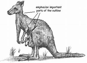 How to Draw the Kangaroos : Drawing Tutorials & Drawing ...