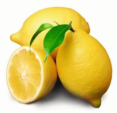 Bunch Lemon Clip Clker Clipart