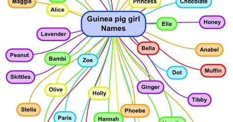 names for pigs guinea pig girl names pet names pinterest hamsters waffles and girl names