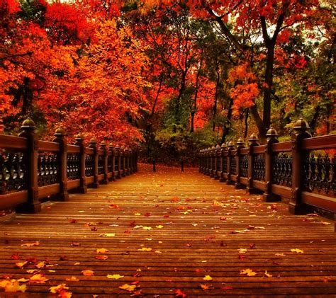 Aesthetic Autumn Laptop Wallpapers by Fall Aesthetic Wallpapers Top Free Fall Aesthetic