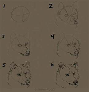 How to Draw A Wolf's Face by SavannaW on DeviantArt