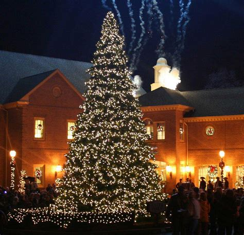 outdoor christmas trees with lights led christmas yard decorations view original updated on