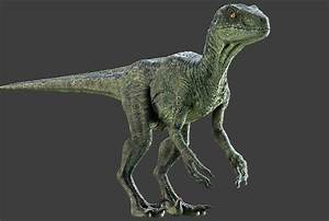 Raptor Dinosaur Maya Rig