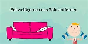 Hundehaare Vom Sofa Entfernen : sofa stinkt nach schwei schwei geruch einfach entfernen ~ Bigdaddyawards.com Haus und Dekorationen