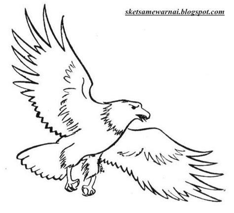37 terbaru sketsa gambar burung dadali