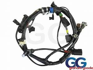 Engine Wiring Loom