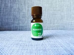 Bicarbonate De Soude Transpiration : votre d odorant maison un jeu d 39 enfant sortez tout vert ~ Melissatoandfro.com Idées de Décoration