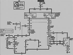 Diagram 66 E Meyer Wiring Diagram Full Version Hd Quality Wiring Diagram Pvdiagramxhoops Wilcockfestival It