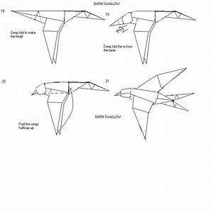 Easy Swallow Diagram