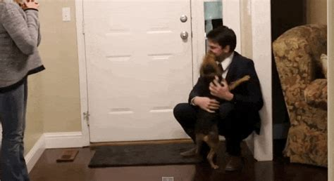 Dog Reunites With Her Human After 2 Years Apart, Can't Even Handle Her Joy
