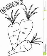 Coloring Carrots Sheet Drawing Creepy Pages Template Useful Getdrawings Sketch Templates sketch template